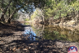 703-golden-oaks-rd-georgetown-tx-78628-bed-of-water